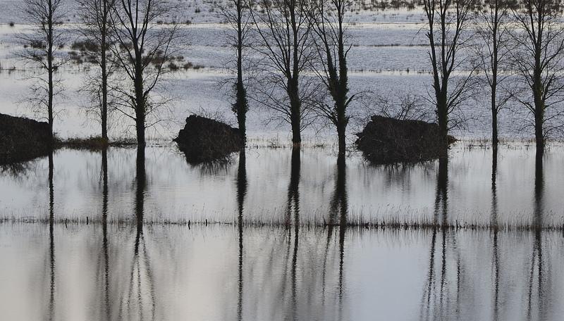 Somerset Floods, from Flickr, under Creative Comms by nicksarebi
